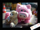 Meeting de peluches